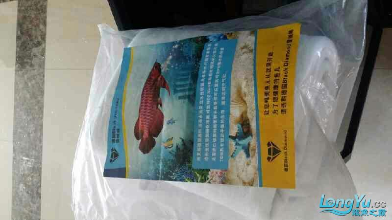 榆林海水观赏鱼哪里有七彩国际滤棉收到,大赞! 榆林龙鱼论坛 榆林水族批发市场第1张