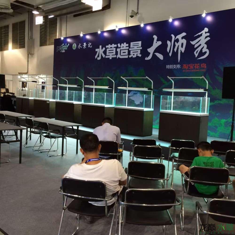 上海大师秀,准备就绪