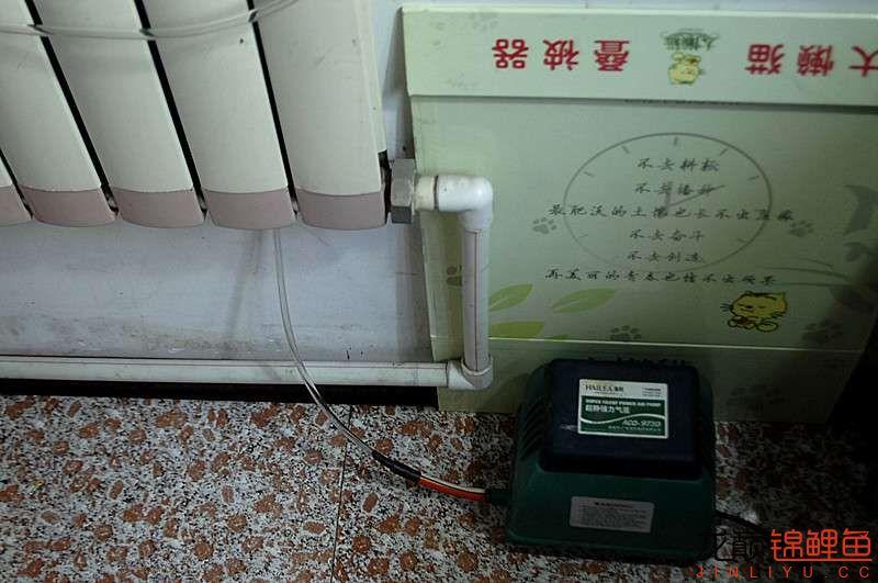 室内泵 (1).JPG