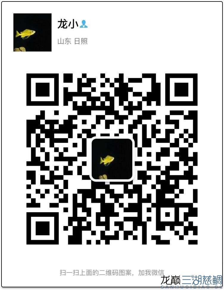 QQ图片20170102214551.jpg