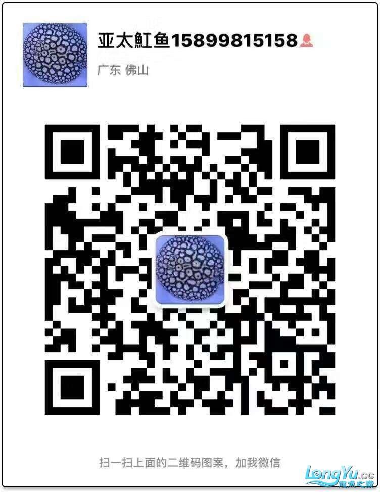 微信图片_20170325115425.jpg