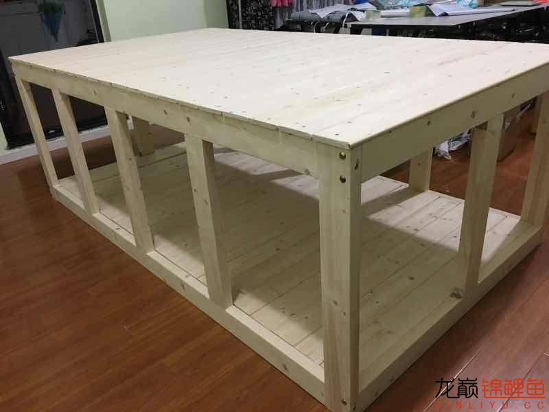 乒乓球桌 济南观赏鱼 济南龙鱼第5张
