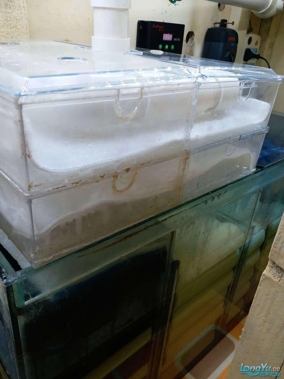 我这滴滤盒是自己拼成一起的 没买的合适大小的