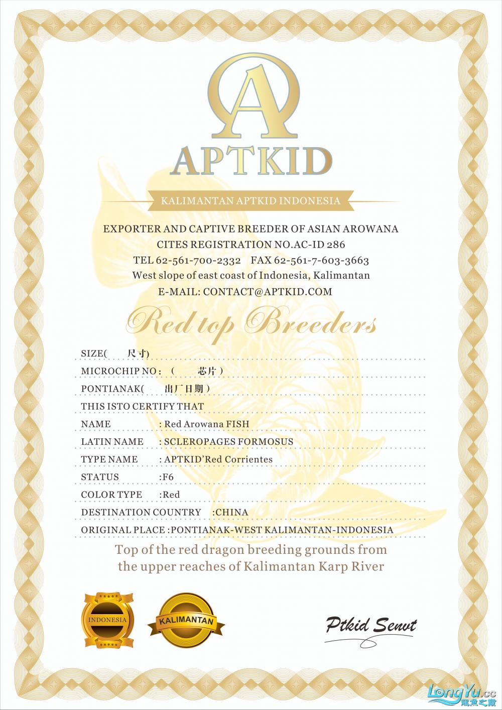 APTKID证书z.png