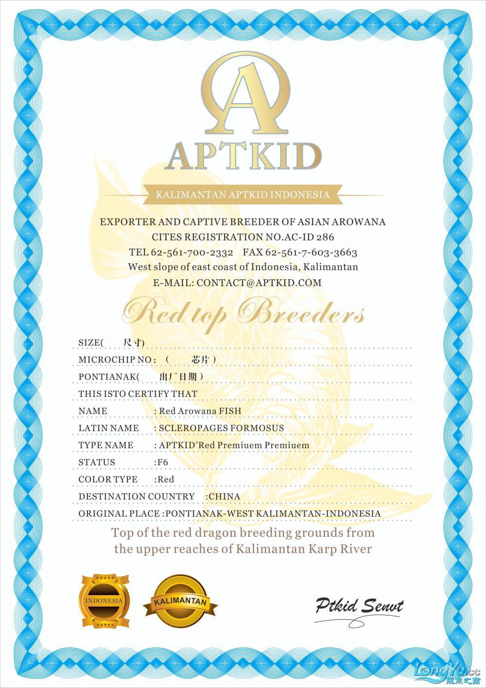 APTKID证书3z.png