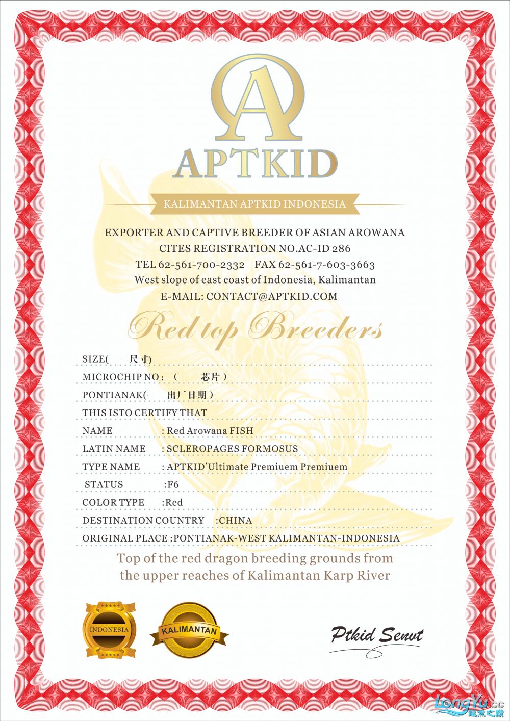 APTKID证书2z.png
