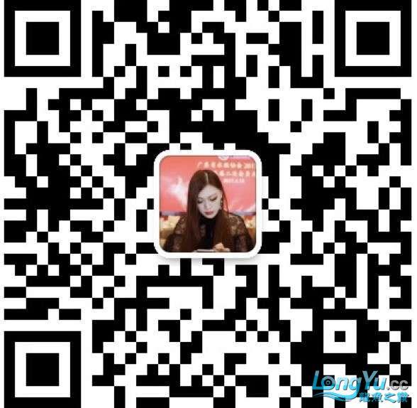 632284551805713537.jpg