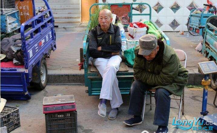 黑龙江的三伏天5.jpg