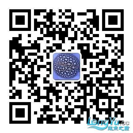 QQ图片20170327172942.jpg