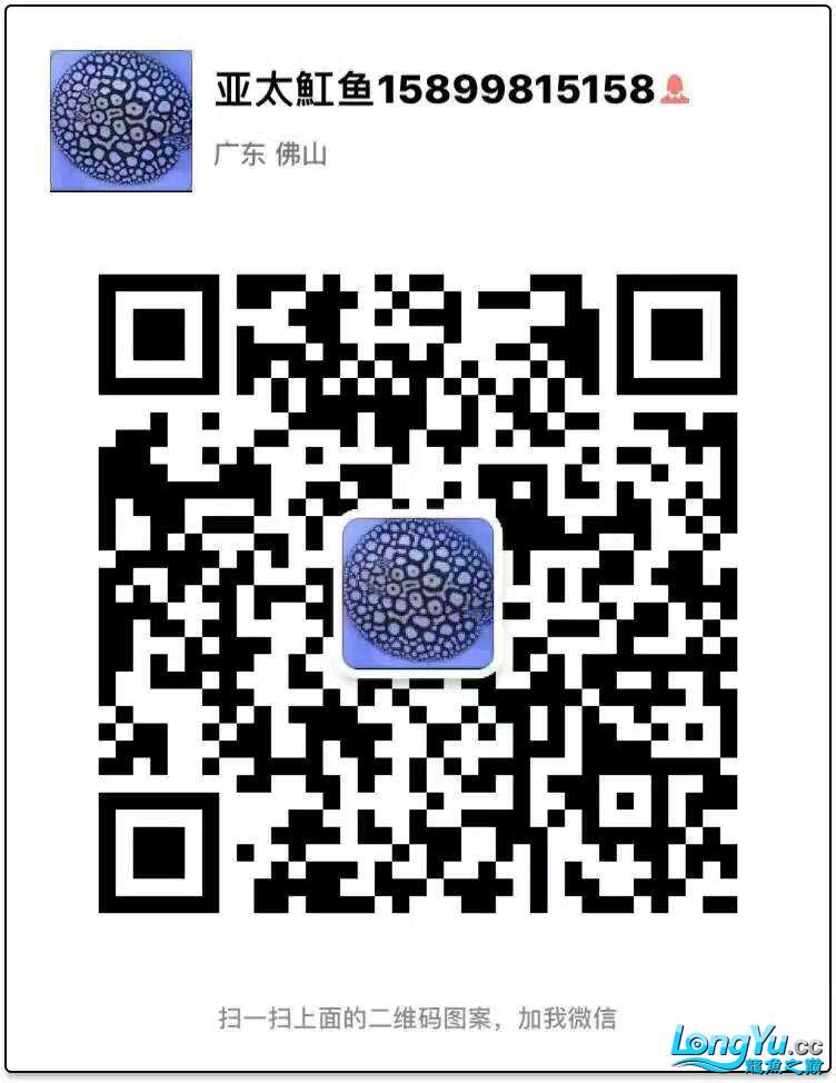 QQ图片20170327152020.png