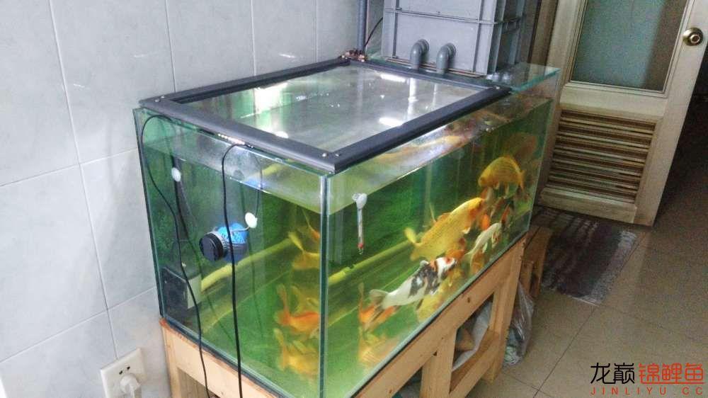 0.9*0.9.45的鱼缸