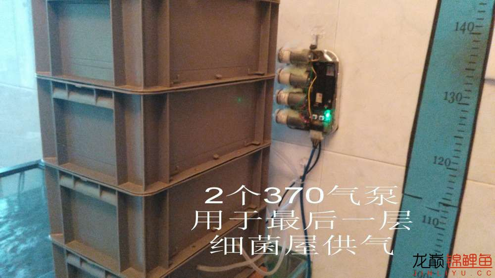 IMG_20170915_141817.jpg