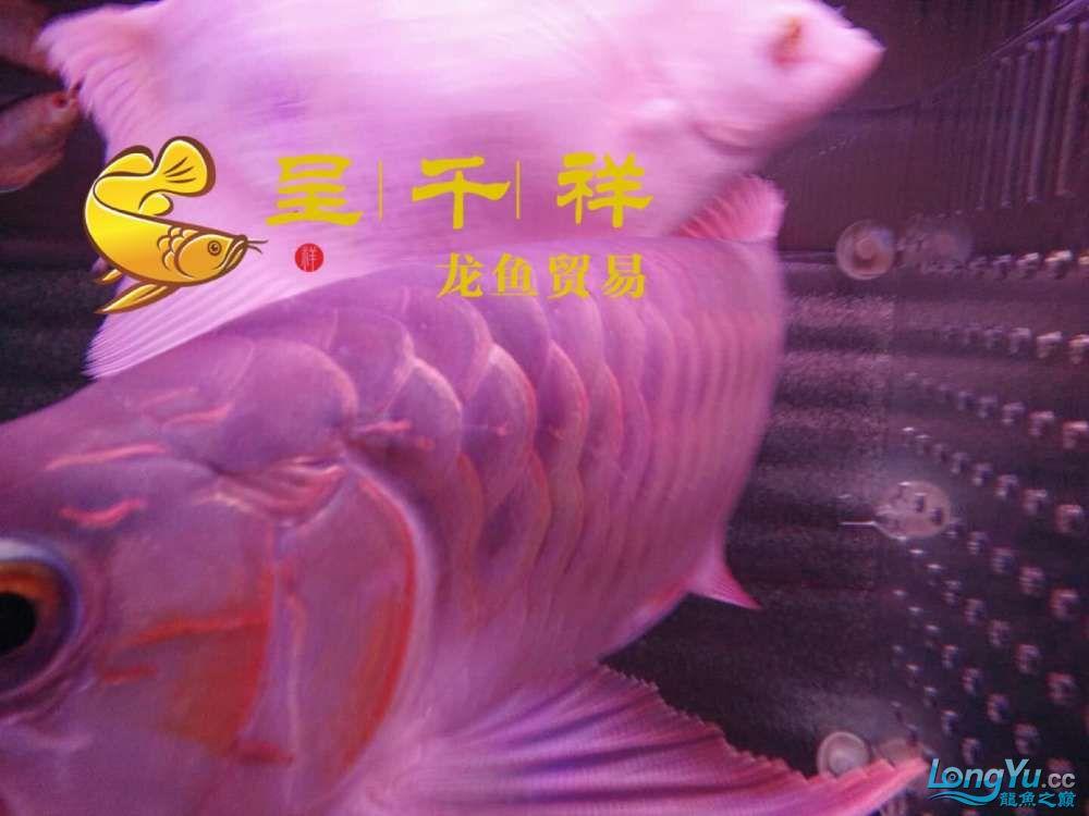 WeChat 圖片_20171026154845.jpg