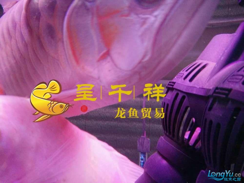 WeChat 圖片_20171026154848.jpg