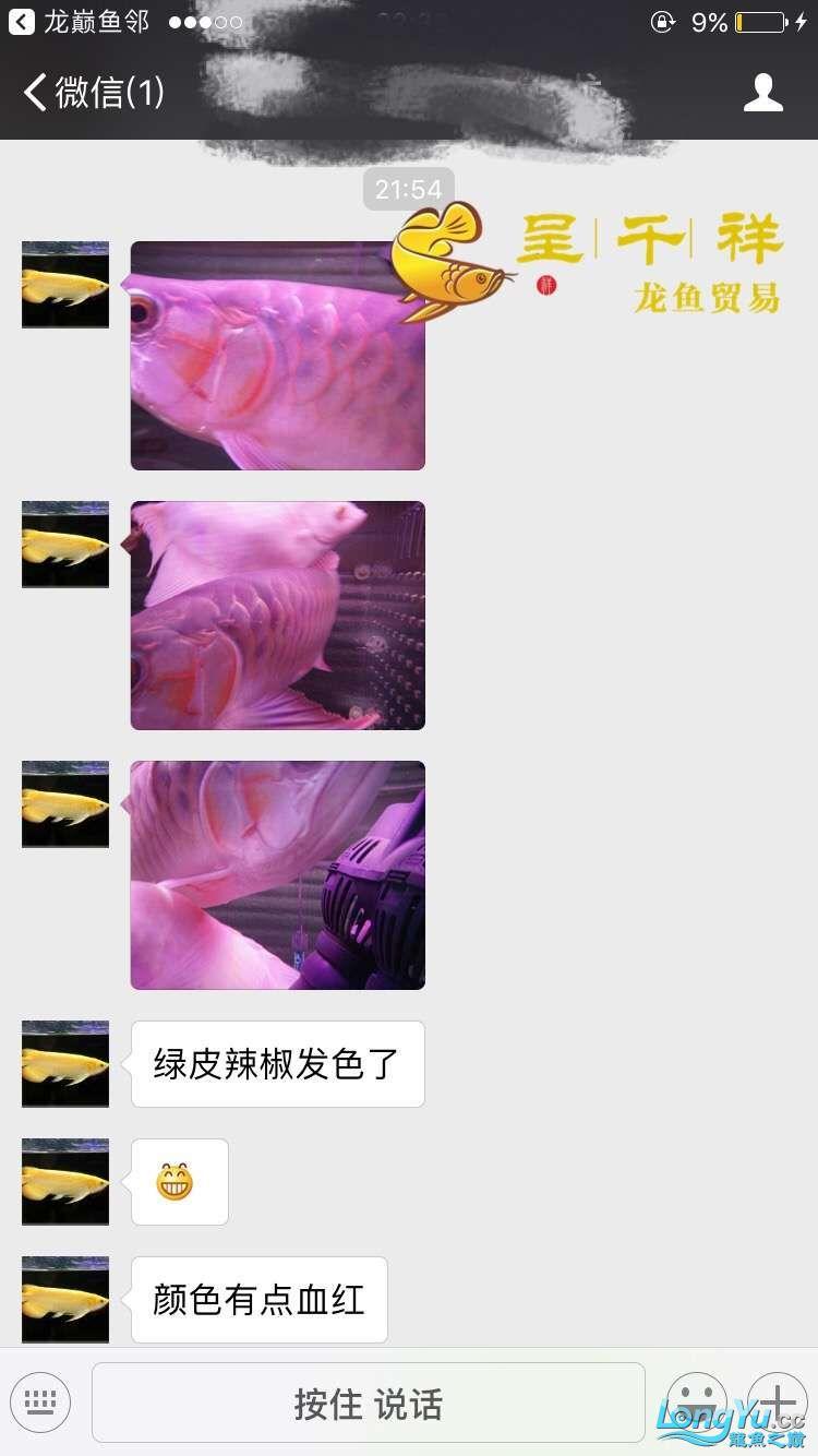 WeChat 圖片_20171026154851.jpg