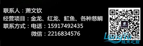 QQ截图20170304172750.png