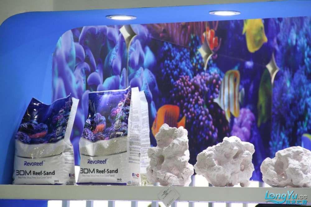 石家庄哪里买鱼缸的市场2017上海CIPS展之不可错过的瞬间 石家庄水族批发市场 石家庄龙鱼第35张