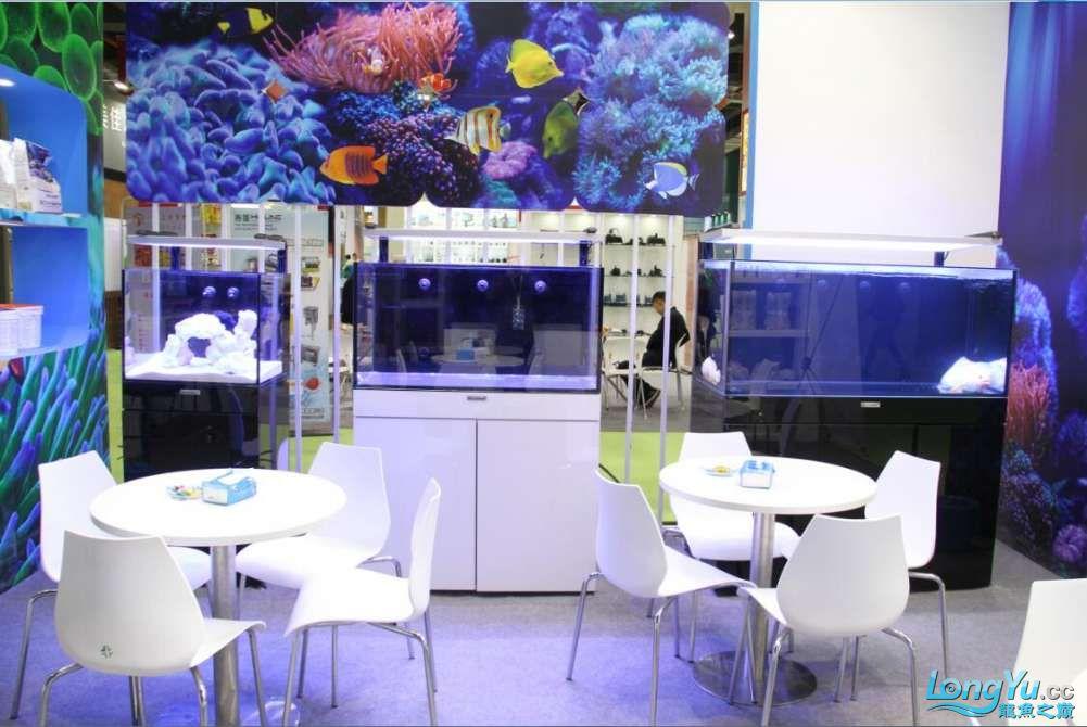 石家庄哪里买鱼缸的市场2017上海CIPS展之不可错过的瞬间 石家庄水族批发市场 石家庄龙鱼第92张