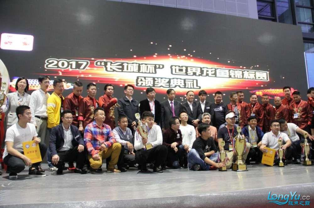石家庄哪里买鱼缸的市场2017上海CIPS展之不可错过的瞬间 石家庄水族批发市场 石家庄龙鱼第68张