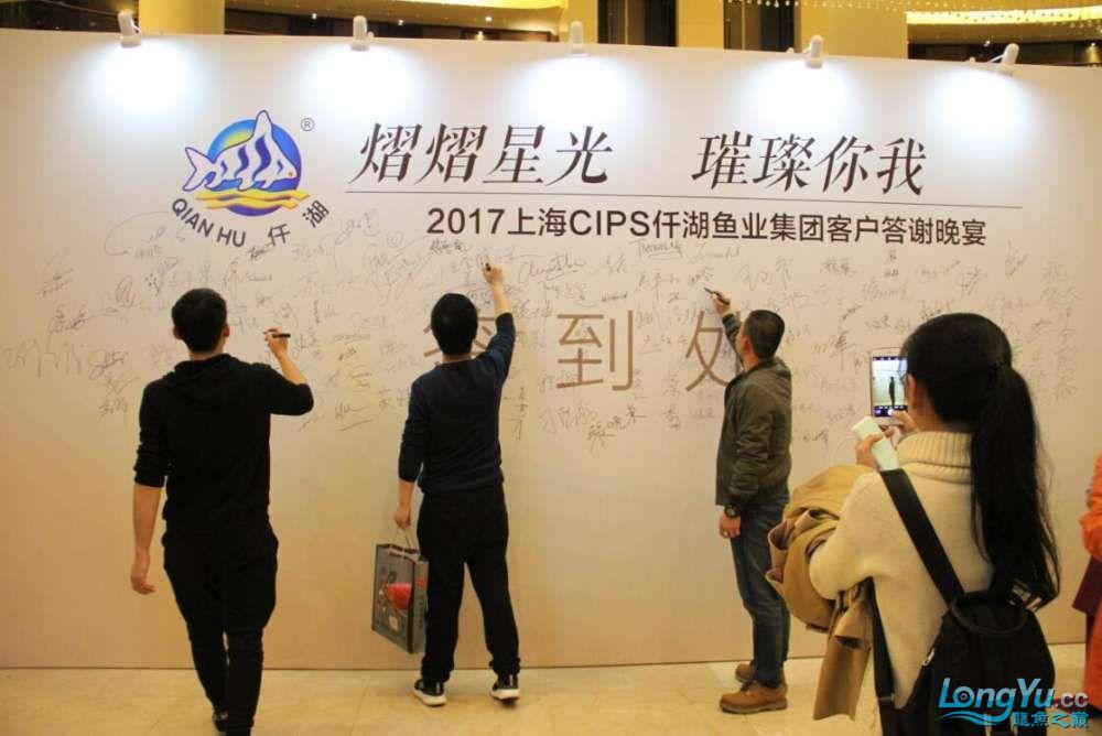 石家庄哪里买鱼缸的市场2017上海CIPS展之不可错过的瞬间 石家庄水族批发市场 石家庄龙鱼第71张