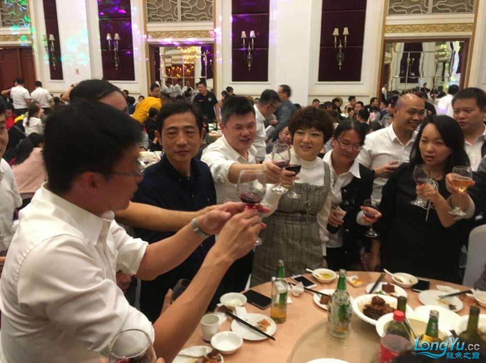石家庄哪里买鱼缸的市场2017上海CIPS展之不可错过的瞬间 石家庄水族批发市场 石家庄龙鱼第79张
