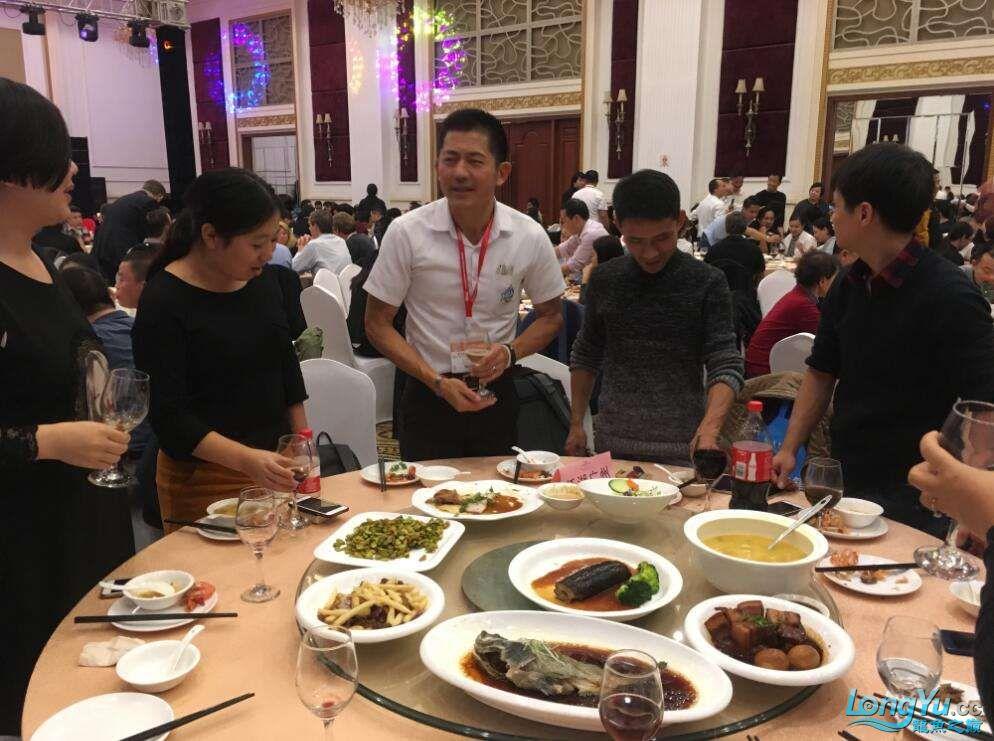 石家庄哪里买鱼缸的市场2017上海CIPS展之不可错过的瞬间 石家庄水族批发市场 石家庄龙鱼第80张