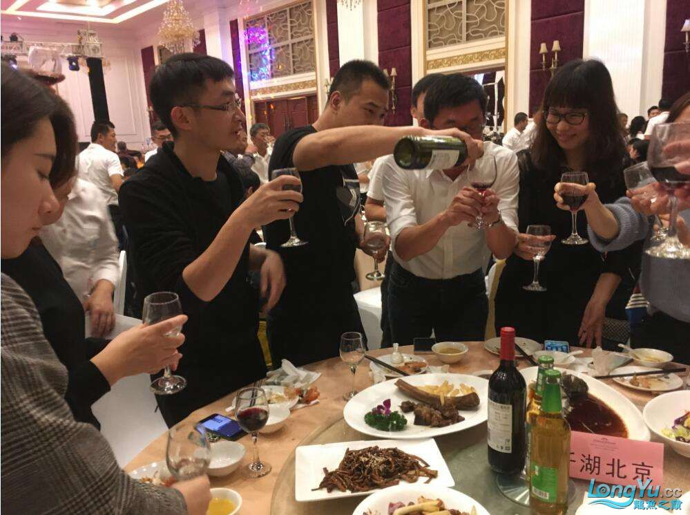 石家庄哪里买鱼缸的市场2017上海CIPS展之不可错过的瞬间 石家庄水族批发市场 石家庄龙鱼第82张
