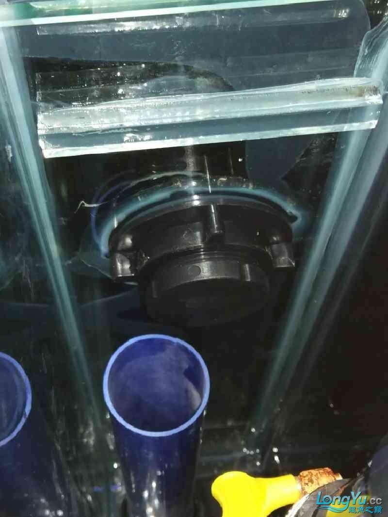 方型溢流底过滤鱼缸共性问题 榆林水族批发市场 榆林水族批发市场第1张