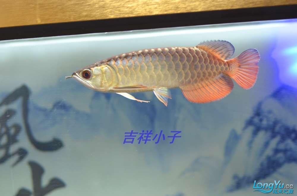 DSC_8325_看图王.jpg