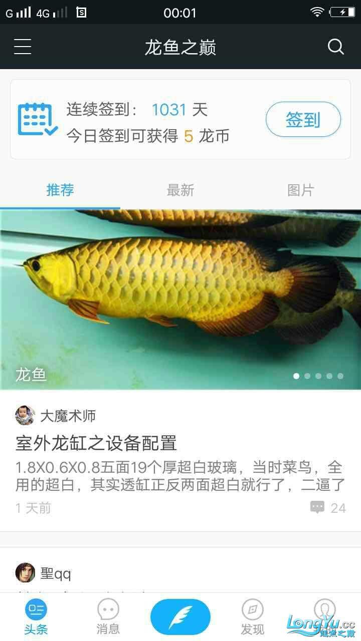 不玩了 韩城龙鱼论坛 韩城水族批发市场第4张