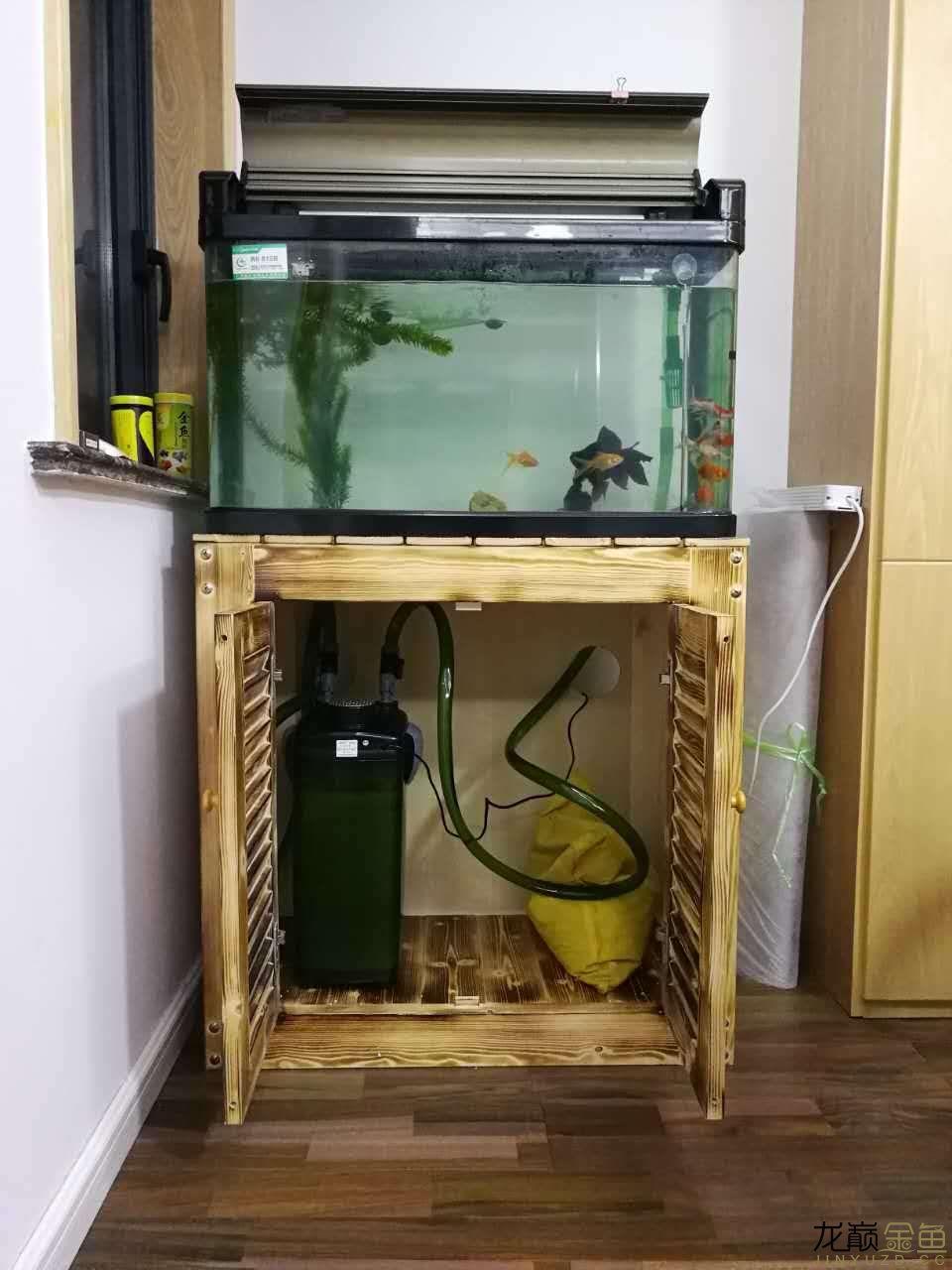 鱼缸1.jpg