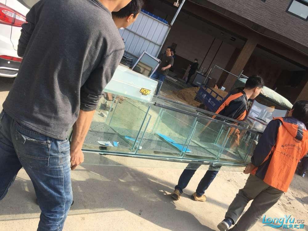 延安鱼缸水族箱批发辉煌水族7米鱼缸上缸1300现场制作过程多图慎完工 延安观赏鱼 延安龙鱼第17张