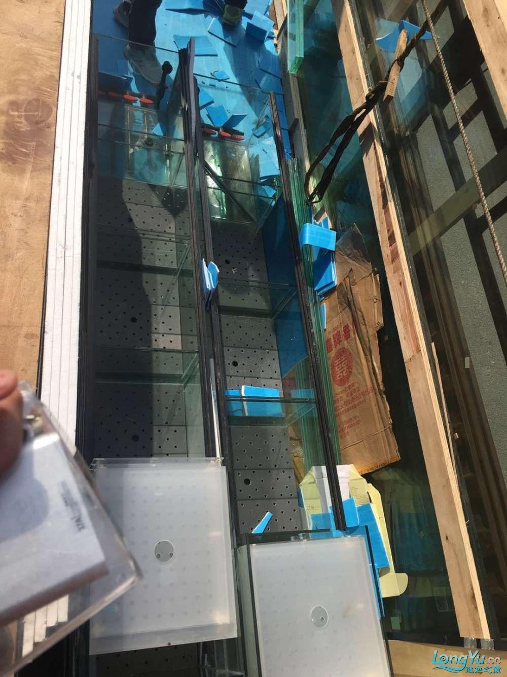 延安鱼缸水族箱批发辉煌水族7米鱼缸上缸1300现场制作过程多图慎完工 延安观赏鱼 延安龙鱼第16张