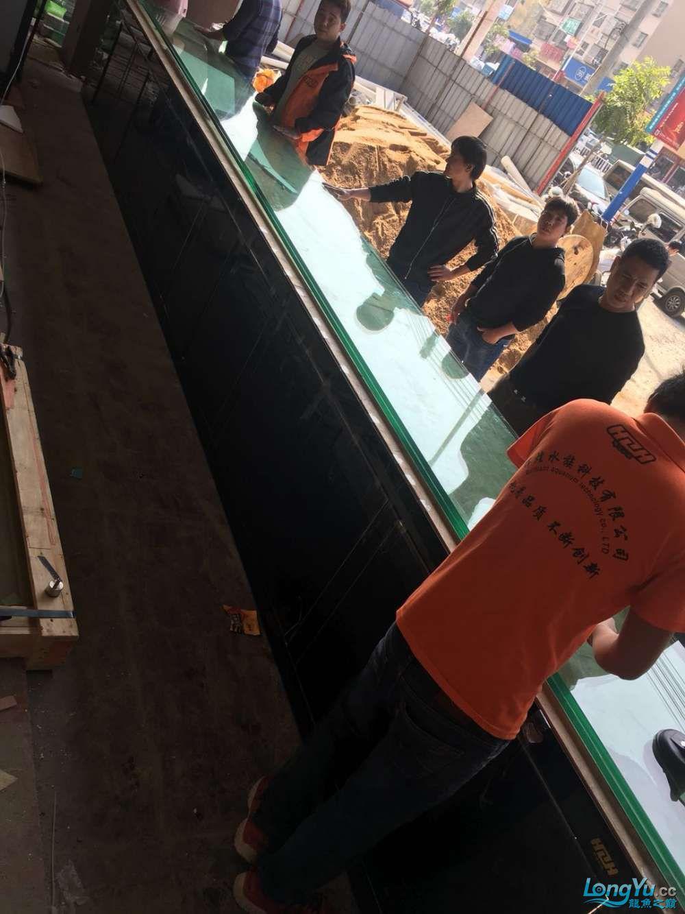 延安鱼缸水族箱批发辉煌水族7米鱼缸上缸1300现场制作过程多图慎完工 延安观赏鱼 延安龙鱼第37张