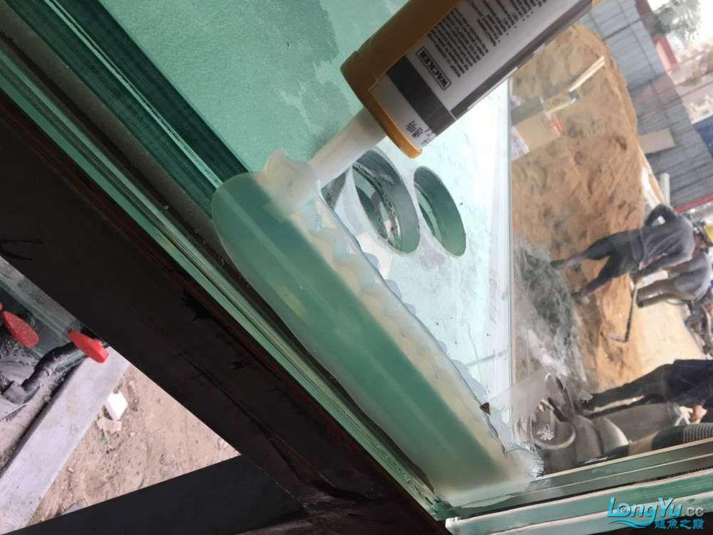 延安鱼缸水族箱批发辉煌水族7米鱼缸上缸1300现场制作过程多图慎完工 延安观赏鱼 延安龙鱼第59张