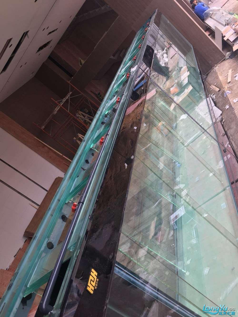 延安鱼缸水族箱批发辉煌水族7米鱼缸上缸1300现场制作过程多图慎完工 延安观赏鱼 延安龙鱼第85张