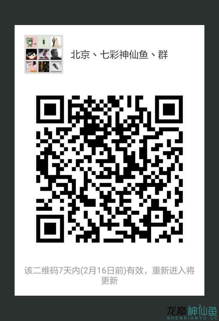 mmexport1518142323172.jpg