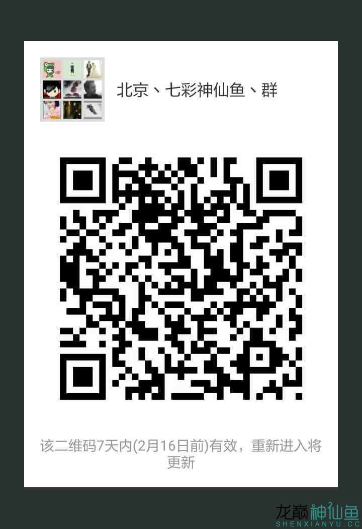 mmqrcode1518142284653.png
