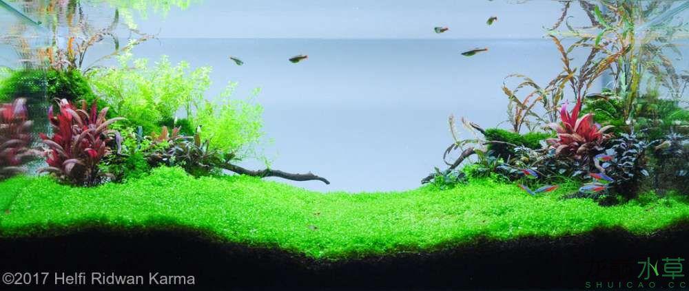 虾之峡谷.jpg