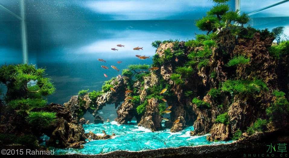 海湾的另一面.jpg