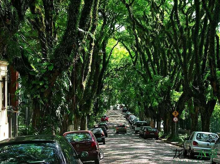 巴西2.jpg