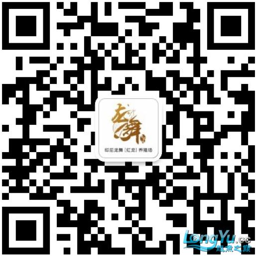 QQ图片20180215124938.png