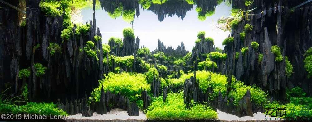 石林2.jpg