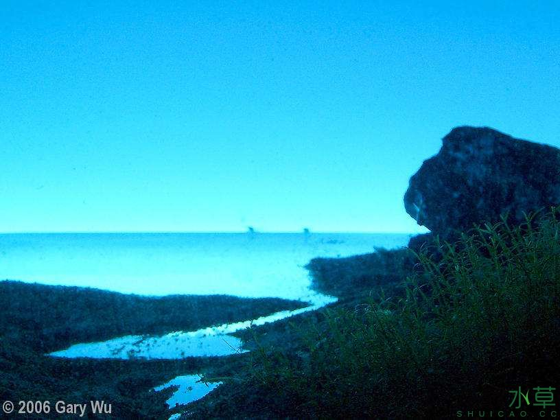 海岸2.jpg