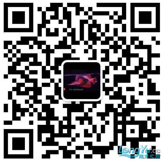 QQ截图20171227193508.jpg