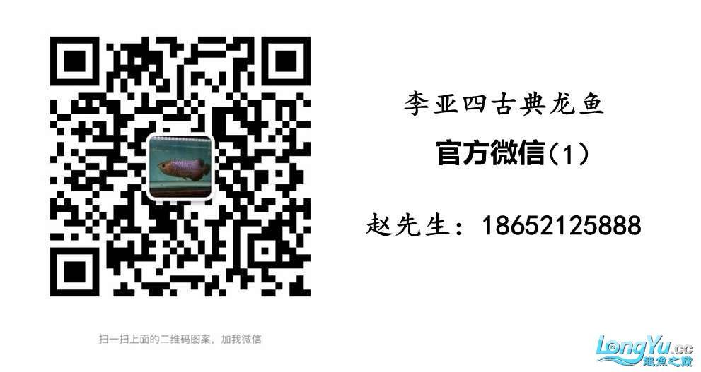 QQ图片20171213161244.jpg