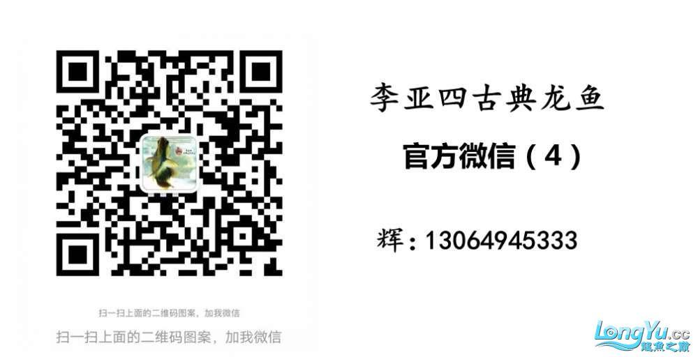 QQ图片20180103163430_副本.jpg