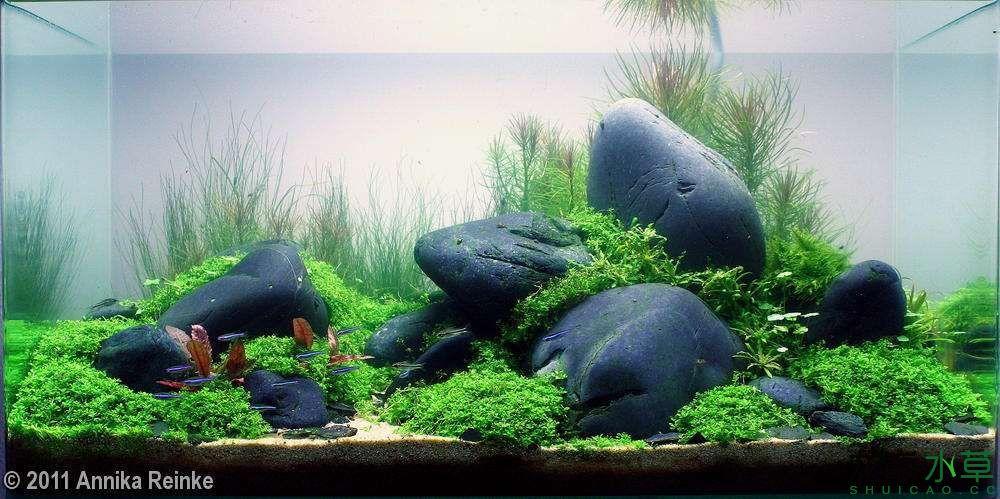 鹅卵石7.jpg