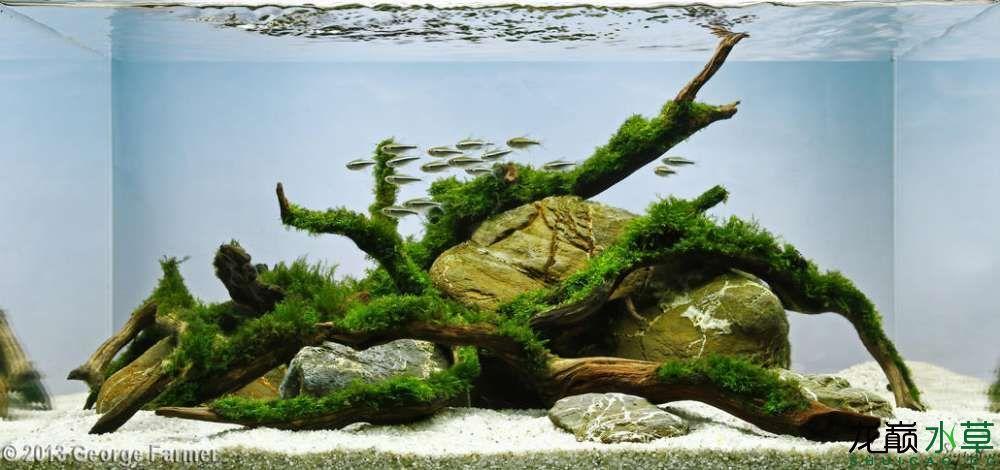 鹅卵石8.jpg