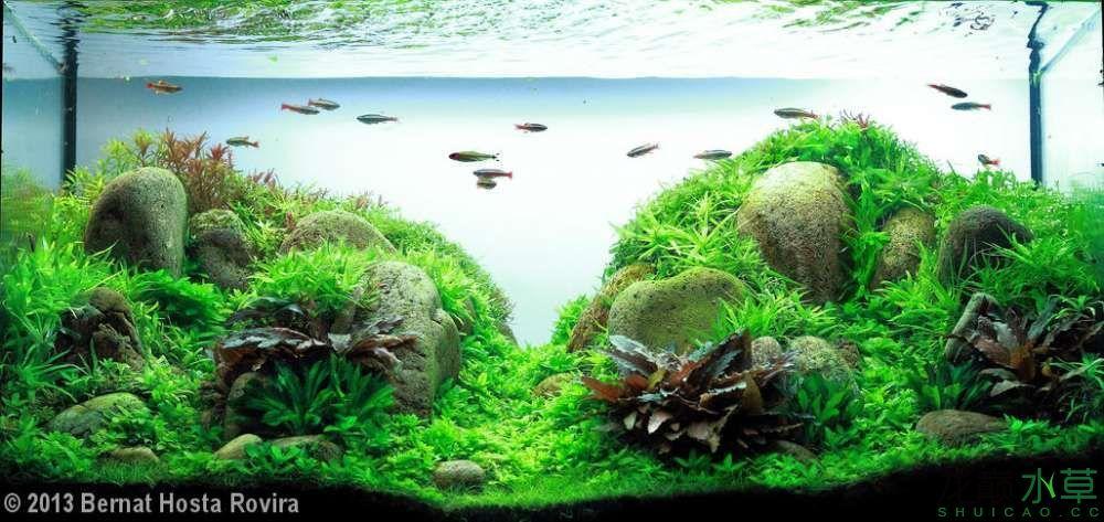 鹅卵石9.jpg